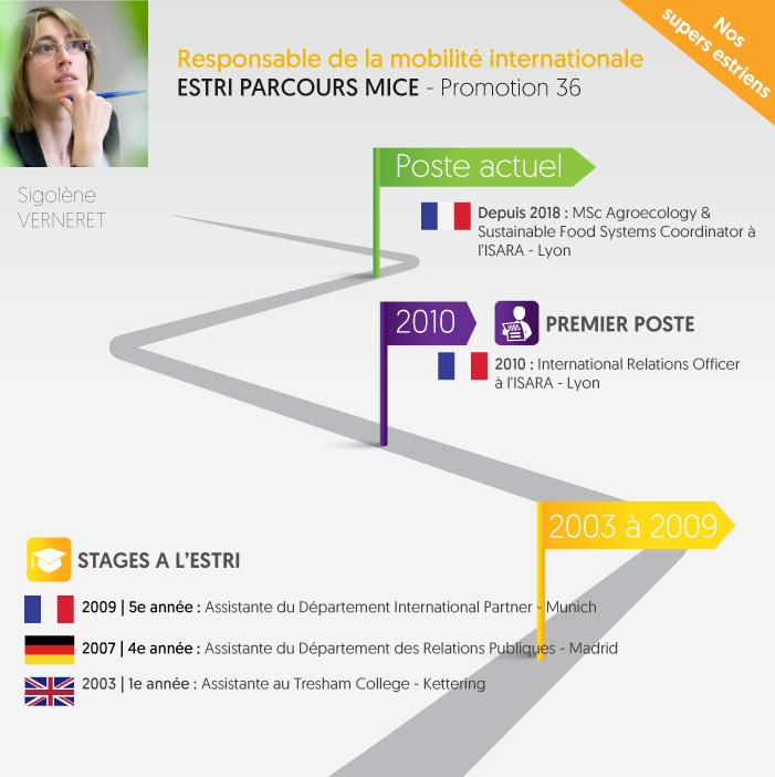 Header ESTRI responsable mobilité internationale